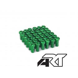 Kit tête de rayon ART Vert