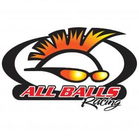Kit roulements de roue avant All-Balls